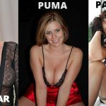 What Is The Difference Between a Cougar, Puma, & Panther?